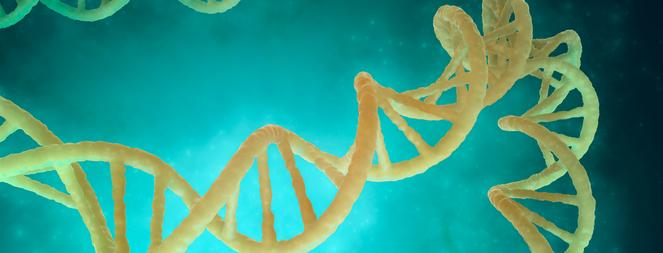Seminário Online de Biologia Molecular e Bioquímica - 1ª Edição