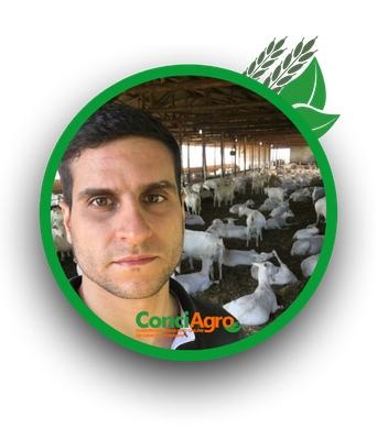 Felipe Seabra Cardoso Leal