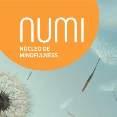 Equipe NUMI - Núcleo de Mindfulness