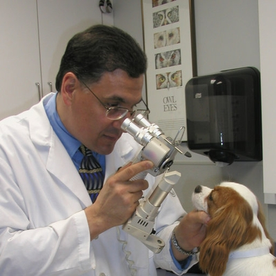 Dr. John Sapienza