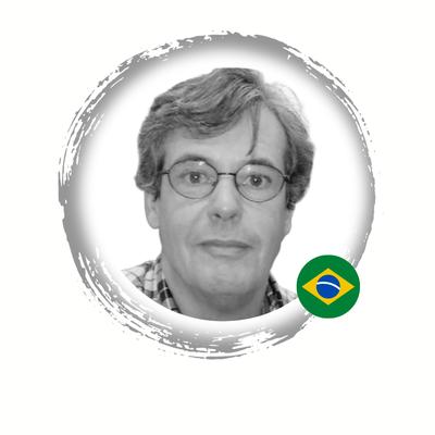 Prof. Dr. Paulo Vidal