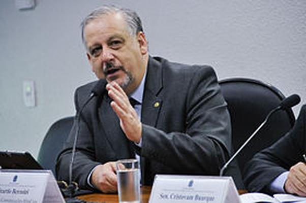 Ricardo José Ribeiro Berzoini
