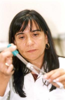 Denise M G  Freire