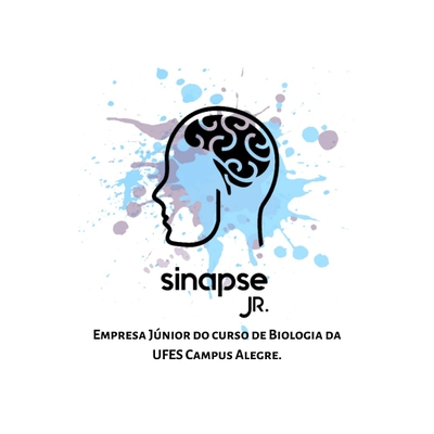 Sinapse Jr