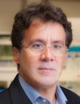 Dr. Sergio Herminio Brommonschenkel