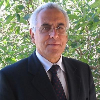 João Antonio Pêgas Henriques
