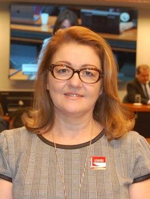 Viviane Guzzo Lemke