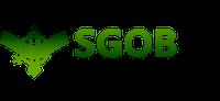 I Webinar SGOB