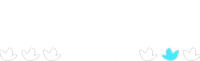 II Webmeeting de Alimentação Consciente e Intuitiva.