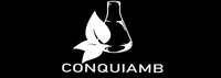 Congresso Online Nacional De Química Analítica E Ambiental.
