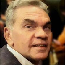 Prof. Dr. Paulo Henrique Alves da Silva