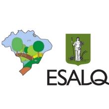 XII Congresso Brasileiro de Sistemas Agroflorestais