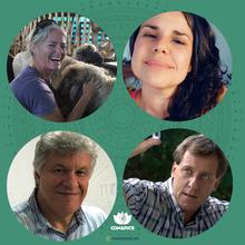 Patrízia Bricarello, Mariana M. C. Quinteiro, Marco Aurélio Bilibio e Fabio Tadeu Lazzerini