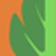 Abertura: Representante da Missão Diplomática Britânica no Brasil  |  Participantes: Cristiane Fontes (Trase.earth), Gustavo Faleiros (InfoAmazonia / Pulitzer Center), Sadie Babits (SEJ / Cronkrite News)  |  Moderadora: Vanessa Barbosa (Um Só Planeta)