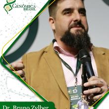 Bruno Zylber