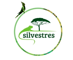 https://www.instagram.com/_silvestres/