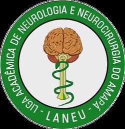 Liga Acadêmica de Neurologia e Neurocirurgia do Amapá (LANNEU)