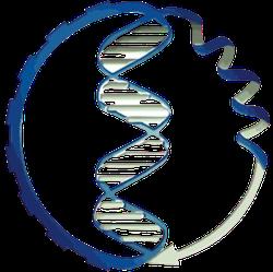 Faculdade de Biotecnologia- UFPel