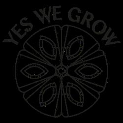 Yes We Grow