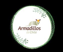 Armadillos de Chile