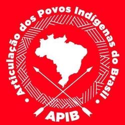 Articulação dos Povos Indígenas do Brasil (APIB)