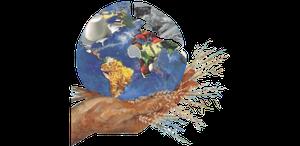 IV Congresso Sul Brasileiro de Alimentação para a Coletividade